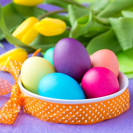 Colorful easter eggs in basket with ribbon, yellow tulips flowers photo