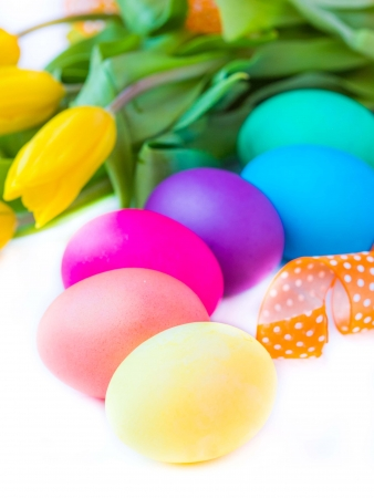 Colorful easter eggs with yellow tulips flowers posted by color of rainbow spectrum photo