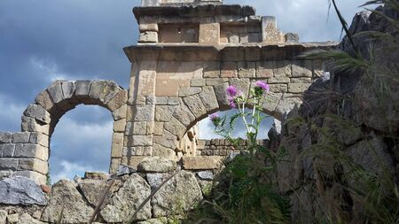 Archaeological site of Tindari Sicily, ancient arch with background of vegetation and flowers Banco de Imagens