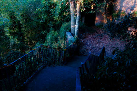 Old iron staircase and garden view at sunset, autumn colors.