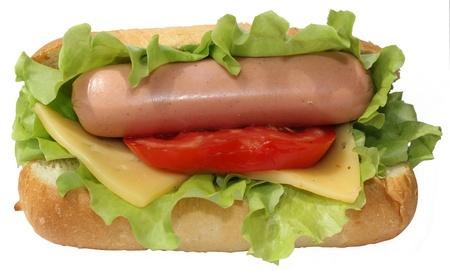 hot  and tasty hot-dog isolated on white background