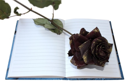 notepad and dried rose isolated on white background photo