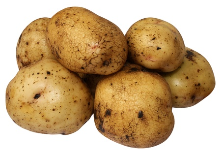 Close up of  potato on white background