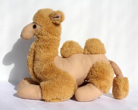 sedentary: Toy un camello de color marr�n de la vida sedentaria