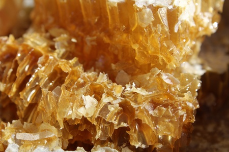Honey more piece of close-up