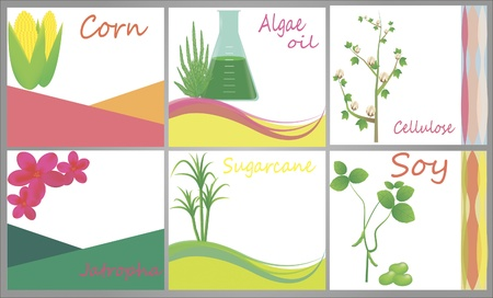 biodiesel: Set of advertising banners connected to biofuel sources corn, algal oil, cellulose, soy, sugarcane, jatropha,