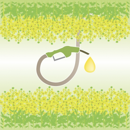biofuel: An illustration of pumping the fuel from raps, the main source of biofuel Illustration