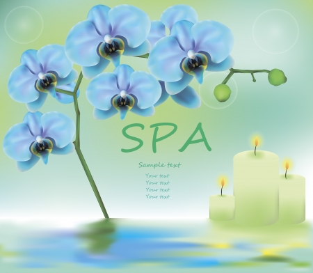 vector illustration of spa advertising including blue orchids and candles surrounded by water Vector