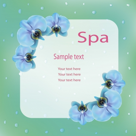 vector illustration of spa advertisement with blue orchids Stock Vector - 22461603