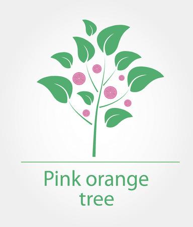 Vector illustration of pink orange tree with orange slices Illustration