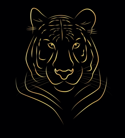 vector illustration of golden tiger drawing  Stock Vector - 24054719