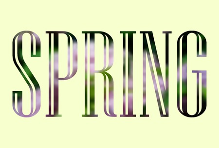 Vector Spring hand lettering. Text typography poster