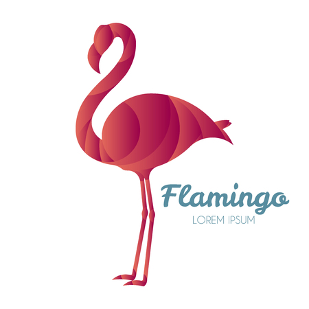 principles: Vector illustration of flamingo logo design template made with golden ratio principles. Illustration