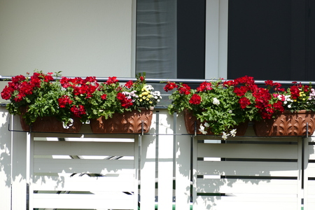 A balcony is decorated with flowers