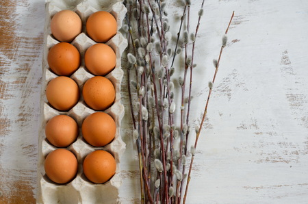 Eggs in a cardboard tray and a bunch of pussy-willow twigs on white background