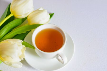 White tender spring tulips and a cup of tea on white background, copy Space.