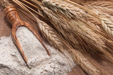 flour: Harina de cuchara y el trigo