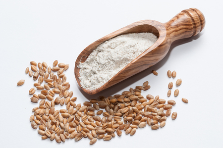wheat: Spoon flour and grains of wheat on a white background