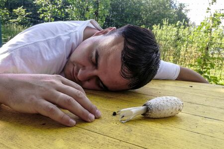 concpt of dangerous, on a yellow street table lies a poisonous mushroom and an unconscious adult man with his eyes closed, summer sunny day. close-up. in the background green plants Foto de archivo