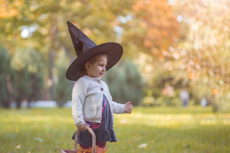 happy haloween. portrait of cute toddler girl in witch hat in the autumn forest.