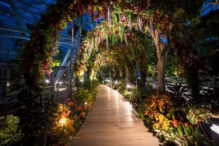 SINGAPORE, SINGAPORE - MARCH 4, 2020: illuminated arch on the alley in the indoor park in the new shopping center Jewel 4 terminal Changi airport top floor