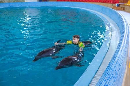 Dolphin therapy. Dolphins swimming with happy little girl in Dolphinarium. Swimming, bathing and communication with dolphins. Treatment of children by means of dolphins. Concept People and dolphins. Stockfoto