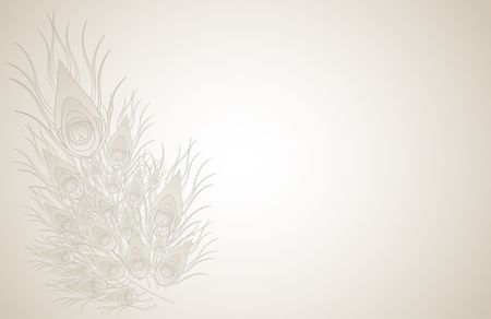 white feather: Peacock feathers isolated on beige background. Raster image. Stock Photo