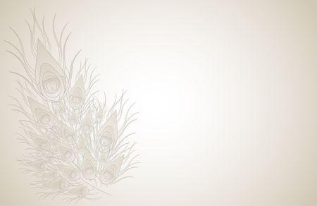 piuma bianca: Piume di pavone isolati su fondo beige. Immagine raster.