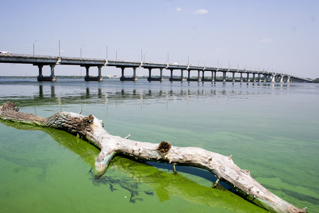 Bridge over the Dnieper river in the summer when the river blooms duckweed Stock Photo
