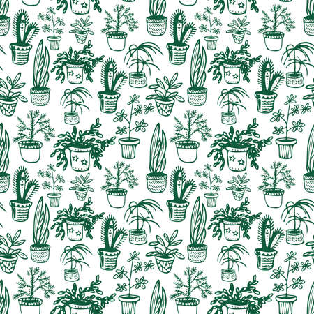 Seamless pattern of plants in scandinavian style. Urban jungle flowers in pots for home and office garden and decoration. Minimalist interior design. Hand drawn vector illustration