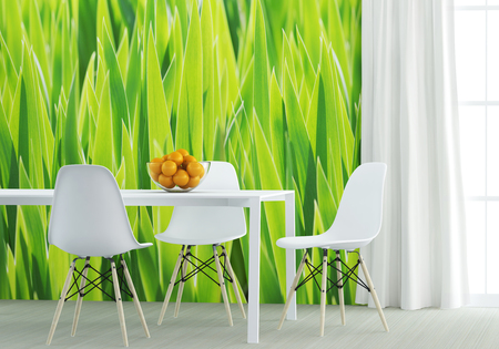 white furniture at the green kitchen