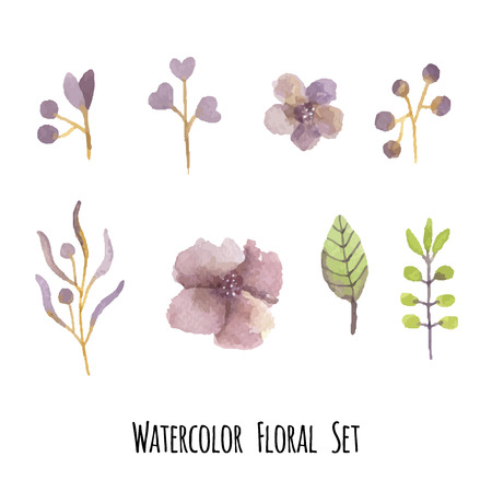 hebraism: Vector set of floral elements in a watercolor style.  Elements for design. Illustration