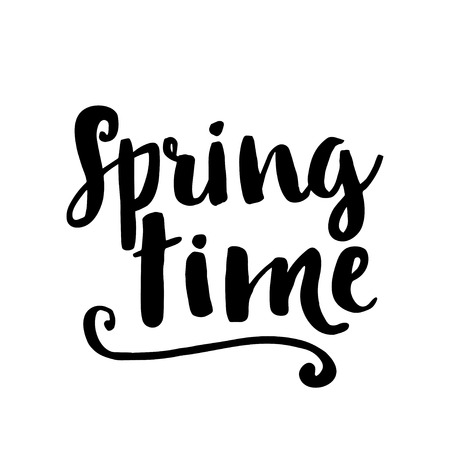 spring time: Spring time card. Hand drawing ink lettering vector art, calligraphy poster. Modern brush calligraphy. Photo overlays.