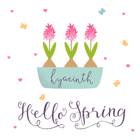 Cute spring illustration pink hyacinths in a pot. Hand drawn lettering hello spring.