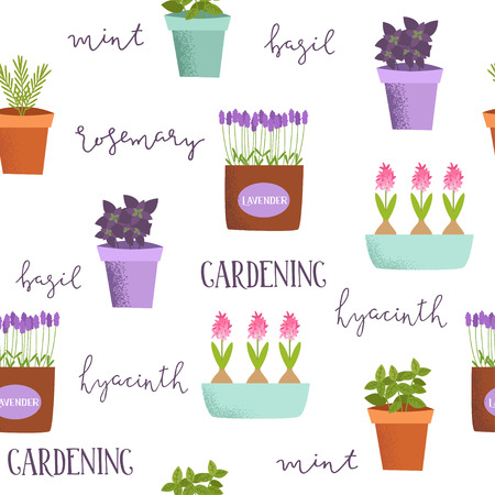 Cute spring pattern of illustrations of plants in pots. Basil, rosemary, mint, lavender, tulips, hyacinths in different cute pots. Çizim