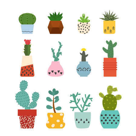 Set of succulent plants and cactus in cute retro pots. Cactus vector illustration for design. Collection of house plants from cactus with flowers. Cacti, succulent on white background. Isolated vector