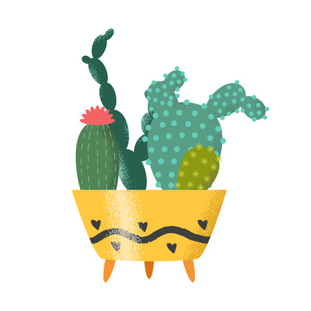 home gardening: Set of cactus vector illustration. Plants in cute retro pots.  Cacti on white background. Isolated vector. Illustration for catalogs on gardening, home plant. Cartoon of green, dwarf cactus.