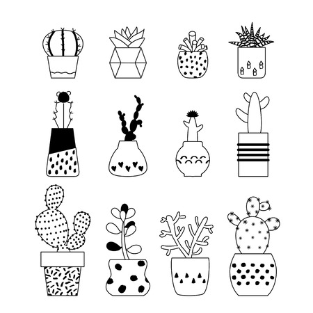 Set of vector illustration succulent plants, cactus in cute retro pots. Collection of house plants from cactus with flowers. Cacti, succulent on white background. Isolated line art, outline vector