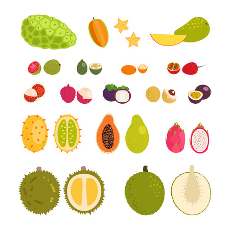 Set of flat cartoon vector illustration tropical exotic fruits.  Isolated objects. Illustration