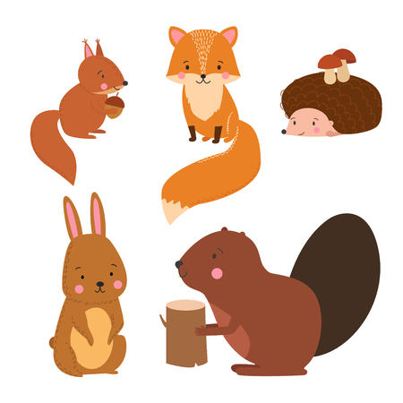 temperate: Set of cute illustration of  woodland animals isolated on white background. Animals for design posters, card, postcard, wallpaper in children room or fabric