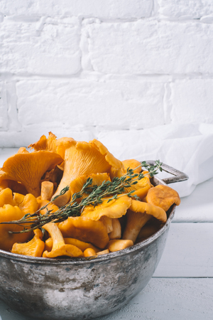 Chanterelles on vintage white wooden background top view, healthy food on table mockup, orange mushrooms isolated on rustic country board, fresh forest nutrition mock  Stock Photo