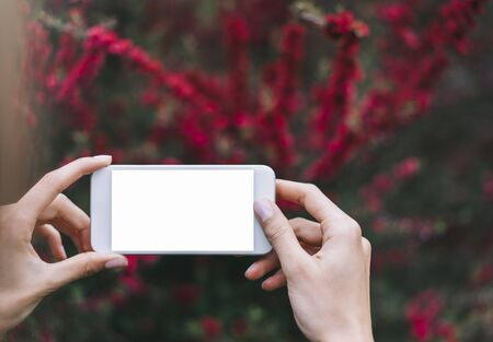Hipster photograph on smartphone or technology, mock up of blank screen. Girl using cellphone on red flowers background. Hands holding gadget on blur. Mockup front view, space for text message