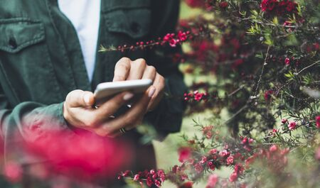 Hipster texting message on smartphone or technology, mock up of blank screen. Girl using cellphone on red flowers background close. Female hands holding gadget on blurred backdrop. Mockup side view. Background with copy space for text message or design
