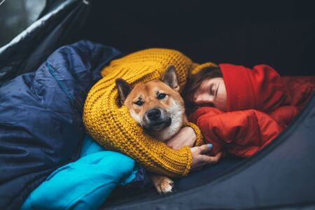 sleeping tourist girl hug resting dog together in camp tent, close up portrait red shiba inu leisure, hiker woman with puppy dog relax nature vacation, friendship love concept