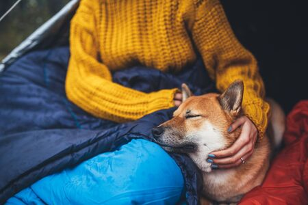 girl hug resting dog together in campsite, close up portrait red shiba inu sleeping in camp tent , hiker woman leisure with puppy dog relax nature vacation, friendship love concept