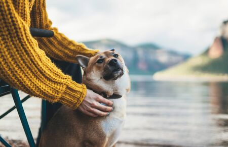 tourist friend girl together tender dog on background mountain, female hands hugging puppy pet on lake shore nature trip, friendship love concept Stock fotó