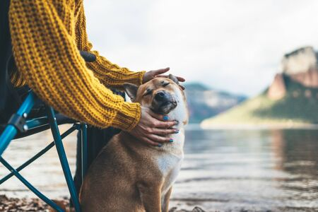 tourist friend girl together tender dog closed eyes on background mountain, female hands hugging puppy pet on lake shore nature trip, friendship love concept