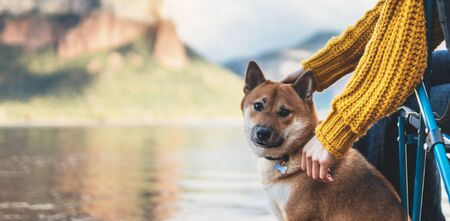 tourist friend girl together tender dog, female hands hugging puppy pet on lake shore nature trip, friendship love concept