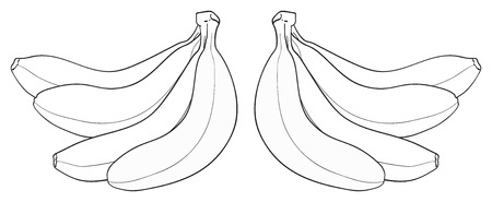 delightful: Bunch of four bananas on white background in the Delightful garden collection Illustration