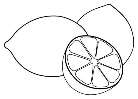 limón: Dos limones y una mitad de limón sobre fondo blanco en la colección de jardín encantador